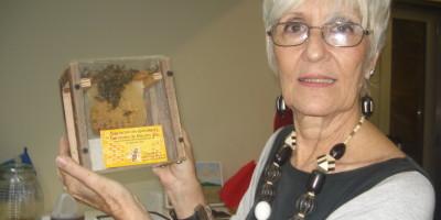 apicultura-07